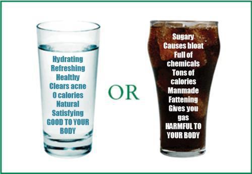 Is Drinking Diet Soda Better Than Regular